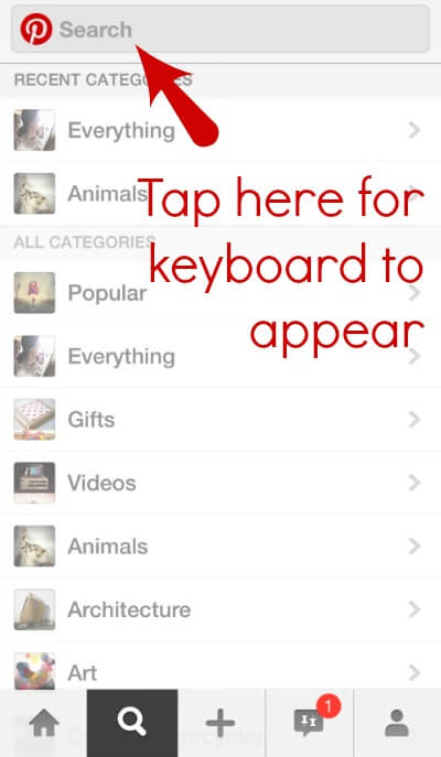 Pinterest iPhone app search
