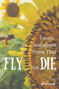 Create Instagram Posts That Fly With Likes Not Die Without Them PIN