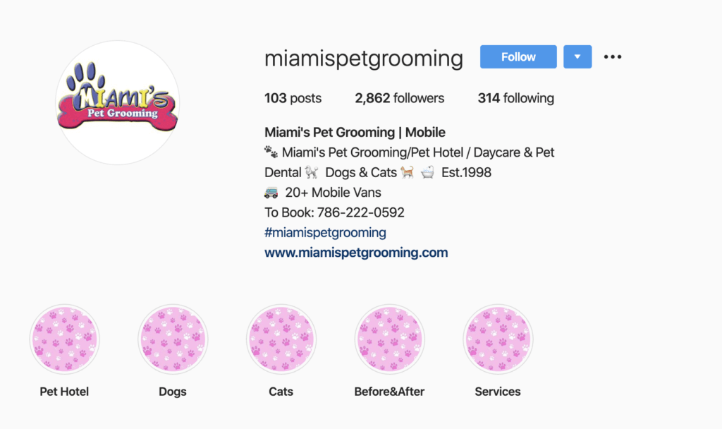 targeting your local audience on instagram through your Instagram bio details