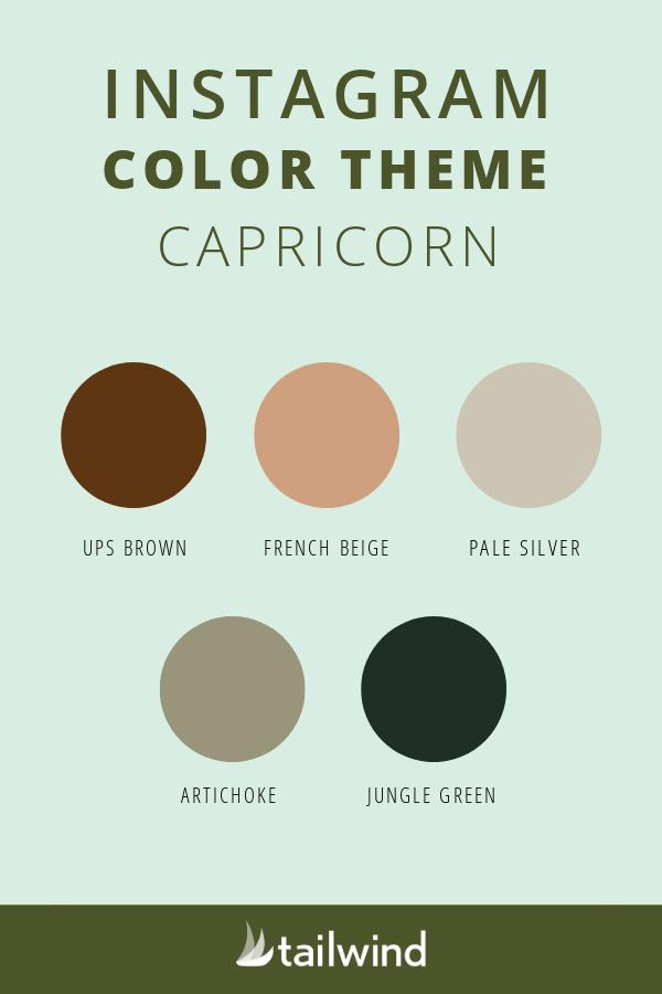 Capricorn color theme for Instagram
