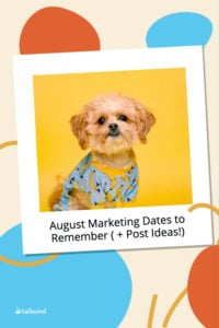 Need some content ideas for the month of August? Come read about some special dates this month and see content inspiration and ideas for your feed!
