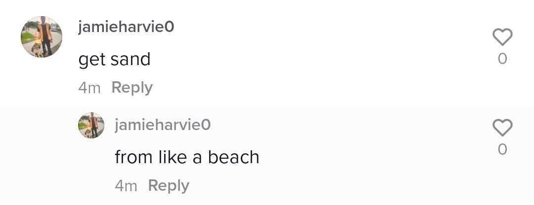 """Screenshot of TikTok image telling Alex to get sand for his print. """"get sand"""" """"from like a beach"""""""